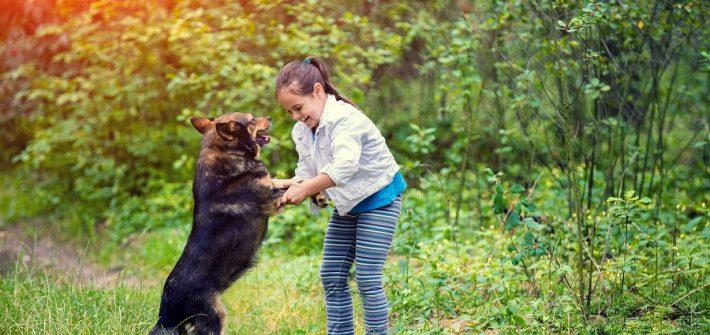 enfant dressage chien